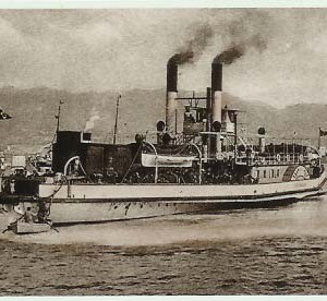 Scilla-1896-01