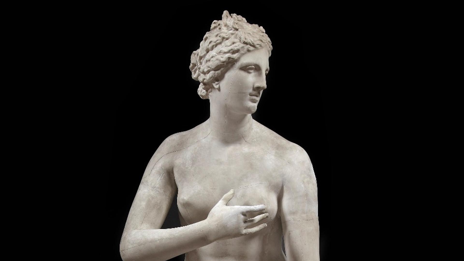 Quando la Venere Medicea di Cleomene viveva a Palermo