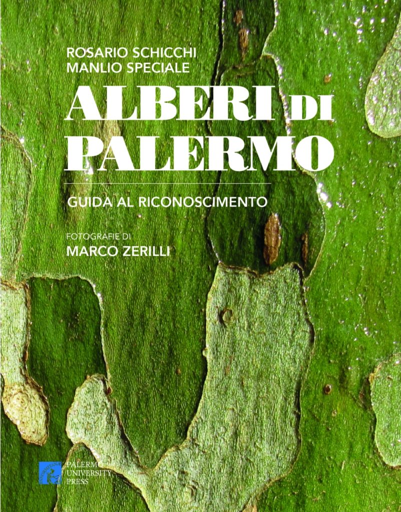Alberi di Palermo